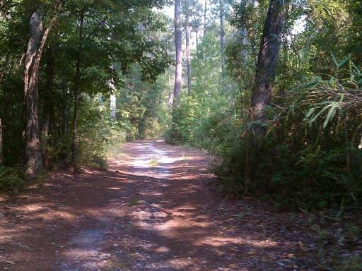 Willow Tree Resort Longs South Carolina Us Parkadvisor